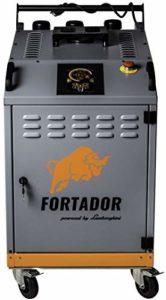 FORTADOR PRO S Nettoyeur à vapeur Nettoyeur à pression Moteur Diesel Hybride Vapeur